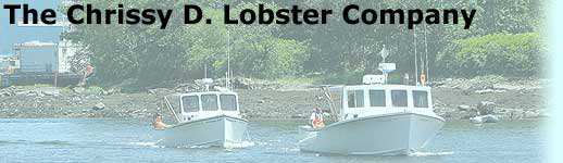 F/V Chrissy D. and Fortunate Son returning from sea.